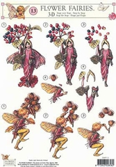 STAPFF13  Flower Fairies  Studio Light