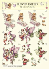 STAPFF19 Flower Fairies  Studio Light