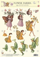 STAPFF24 Flower Fairies  Studio Light