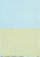 BASISFL03 Flowers Studio Light