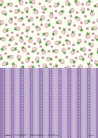 BASISFD01 Fairry Dreams Studio Light