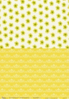 BASISFD04 Fairry Dreams Studio Light