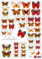 Butterflies Red